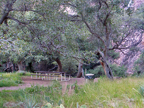 Van Patton Mining Camp - Picnic Area