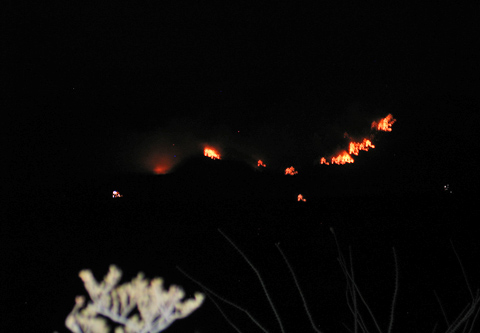 Organ Mountain Fire