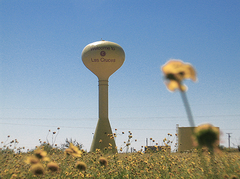 Las Cruces Water Tower - Flower